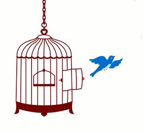 Restez libre !